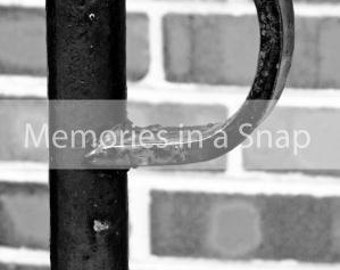 Letter P - Alphabet Photography Individual 4x6 Black and White Photo for Name Frames
