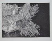 Peek-a-Boo/an aquatint etching of an adorable dog seeking attention
