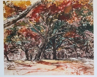 Autumn Forest, solar plate etching printed a la poupee and handcolored