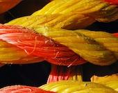 Yellow & Orange Nautical Rope 11 x 14