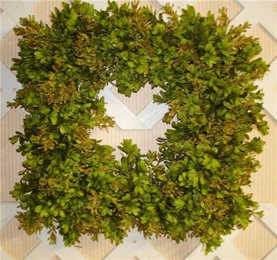 "16"" Square Faux Boxwood Wreath, Designer Sage green Very Realistic"