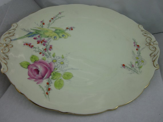 Vintage 1930's Paragon China Commemorative Dinner Plate Budgy and Flower Pattern