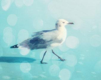 Seagull Bokeh Beach Print - Aqua Bird Beach House Wall Art Home Decor Soft Pastel Ocean Photo