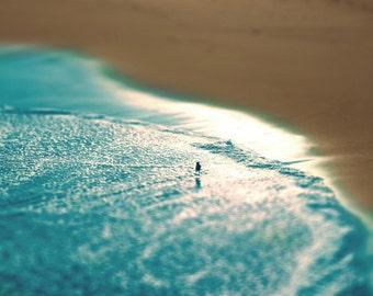 Beach Bird Art Print  - Tilt Shift -  Shoreline Blue Tan Sand Water Reflection Photograph