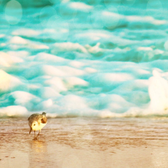 Beach Bird Sandpiper Art Print - Aqua Sand Surf Bokeh Ocean Beach House Wall Art Home Decor Photograph