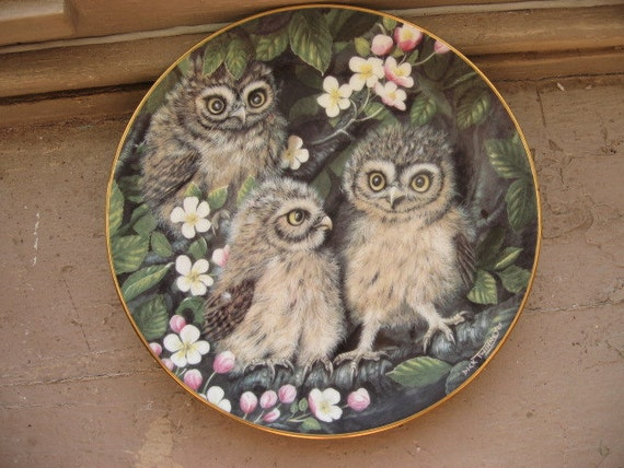 Baby Owls Collector Plate, Little Owls by Dick Twinney from Danbury Mint