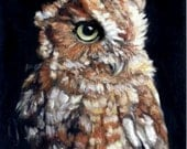 """Original Oil Painting: Eastern Screech Owl portrait """"Out of the Darkness"""""""
