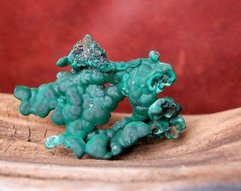 Malachite Dragon natural botryoidal formation with druse