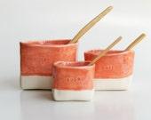 Ceramic Salt and Pepper, plus Sugar- Nesting Cellars in Coral