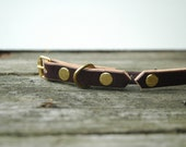 Leather Cat Collar in Dark Brown with Brass