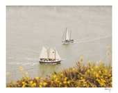 Boat Photo - San Francisco Photo - Yellow Flowers - Summer - Nursery Art - Olive Green - Marin - Nautical - Vintage - We Meet Again