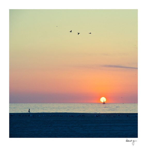 Venice Beach Photo - Ocean Photograph - Pink Sunset - Bird Print - Fine Art - Sail Boat - Travel Photograpy - Trifecta