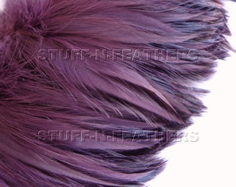 Amethyst rooster furnace hackle feathers, real feathers for hair extensions, millinery, crafts, fishing / 4-5 in (10-13 cm) long / F88-4