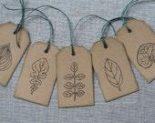 25% OFF 5 Herbarium Labels