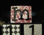 Personalized Custom Decorative Letter Blocks