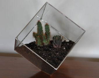 Earth Terrarium Kit, large cube glass planter in copper or silver color -- terrarium supplies -- eco friendly