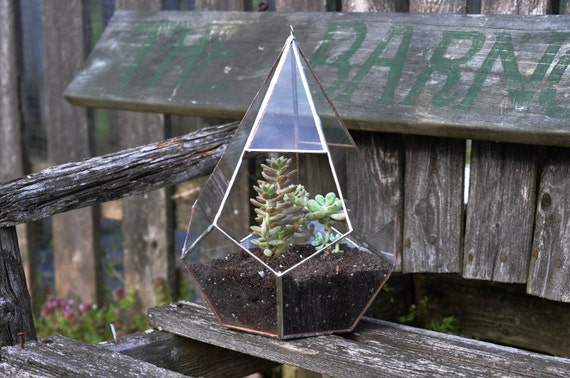 Teardrop Terrarium Kit, large teardrop glass terrarium -- hanging or sitting -- stained glass -- copper or silver color -- eco friendly