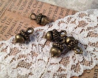 6 - Acorn Charms, Antique Bronze, Woodland, Vintage Jewelry Supplies  (BD087)