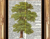 TREE - Vintage Dictionary Print Frameable Digital Image on Old Page Beautiful Green Leaves Tree Forest Nature Home Decoration