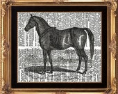 HORSE - Vintage Dictionary Page Print Beautiful Black and White Horse Animal French Country Nature Picture to Frame