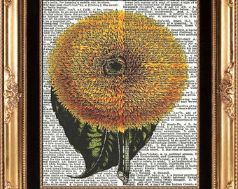 Sunflower Vintage Dictionary Page Art Print Beautiful Antique Large Yellow Flower Plant French Country Provencal Italian Home Wall Decor