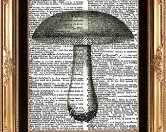 MUSHROOM - Vintage Dictionary Page Print to Frame Beautiful Antique Mushroom Wall Hanging Frameable Picture