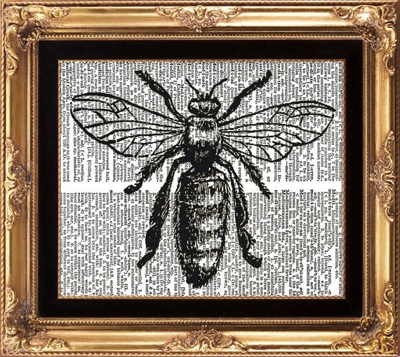Bee Vintage Dictionary Art Print Antique Black and White Insect Drawing Beautiful Green Garden Room Home Decoration Interior Design Art