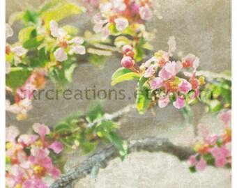 Shabby Chic Cherry Blossom