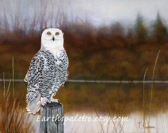 Snowy owl bird painting 8x10 print from original oil painting birds of prey owl fall painting home and garden earthspalette