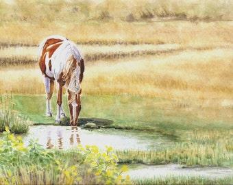 Pinto, horse painting 9x12 landscape, original watercolor painting home & living, rustic horses earthspalette