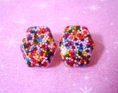 Sprinkle Resin Earrings