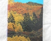 Autumn: Recycled Vintage National Geographic Mini Notebook