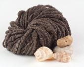 Handspun Art Yarn, Seashells Spun in Natural BFL, 'Pretty Little Brown Shells' by WoolWench