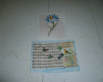 butterflies birds and flowers note cards