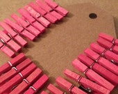 Hand Dyed Mini Clothespins VIVID ROSE - Set of 25