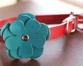 "3/4"" Leather Dog Collar with Flower Embellishment"