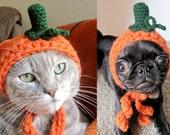 pet costume CAT COSTUME HALLOWEEN pumpkin dog pet hat for cat dog x-small small puppy hood hoodie adjustable crocheted