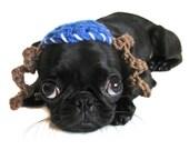 Hanukkah DOG HATS YARMULKE  kippah Chanukah mitzvah bar bat bas cat hat crochet blue white payot chanukah chanukah photography props