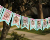 Babies First Birthday Photo Bunting