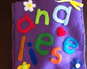 Personalized Felt Name Book (10 pages)