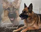Fleece Blanket German Shepherd Softe Blanket or Throw