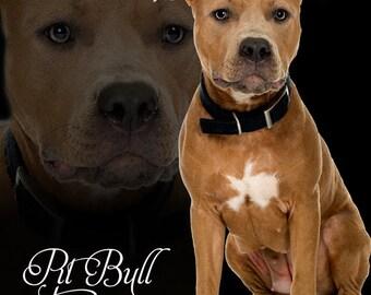 Fleece Blanket Pit Bull Terrier Soft Blanket