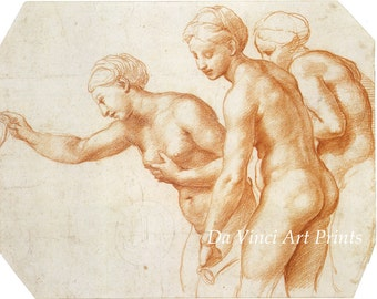 Fine Art Reproduction. Study for The Three Graces, c. 1517, Drawing by Raphael. Fine Art Print.
