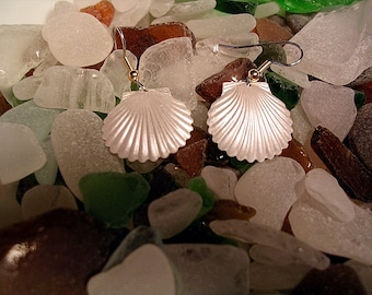 Scallop Shell Earrings. Hand Painted in Pearlescent White..
