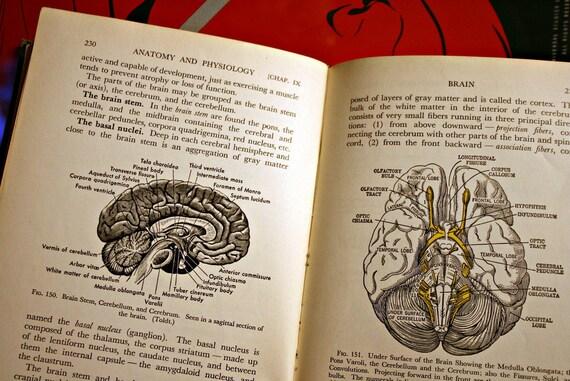 1942 Medical Anatomy Textbook-Illustrated Vintage