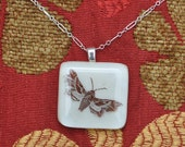 "Sphinx Nerii Hawk Moth Glass Pendant on sterling silver 18"" necklace."