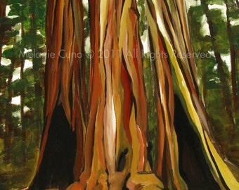 "8x10"" Redwood Trees- giclee print of original acrylic painting 8""x10"""