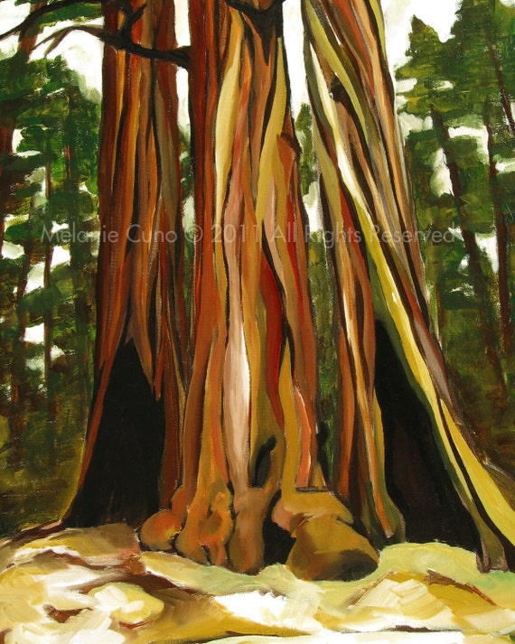 8x10 Redwood Trees giclee print of original acrylic Redwood Tree Painting