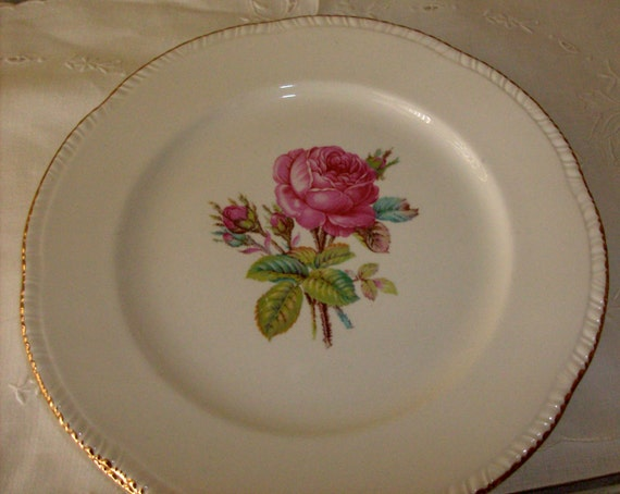 Pink Rose China Plates, Two Homer Laughlin Large Plates