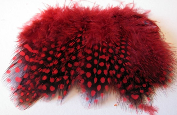Strung Guinea Fowl Feathers - Red